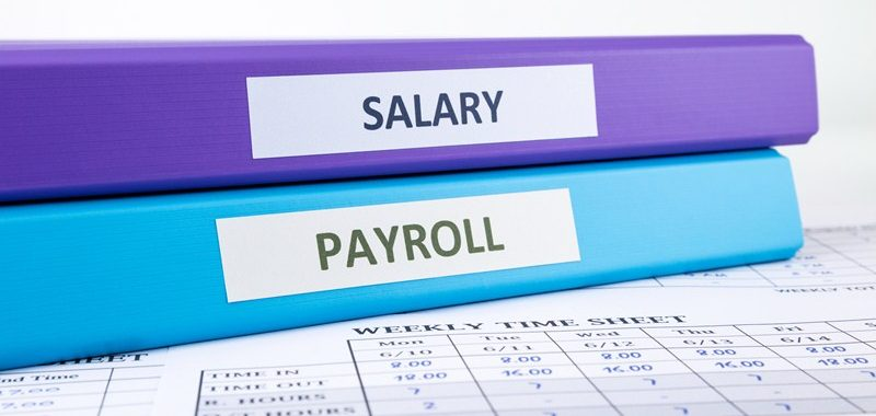 8c5fdf83 3280 4521 964c b1132c05f544 800x380 - Tax codes for employees